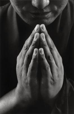 Tobi Wilkinson - For All Sentient Beings