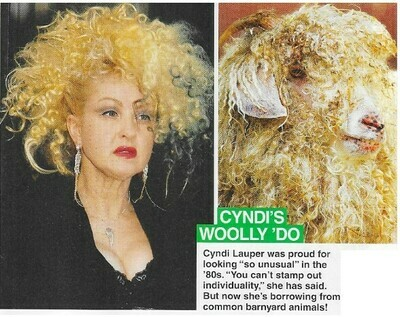 Lauper, Cyndi / Cyndi's Woolly 'Do   2 Magazine Photos with Caption   March 2010