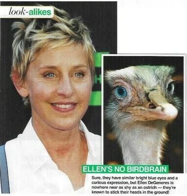 DeGeneres, Ellen / Ellen's No Birdbrain   2 Magazine Photos with Caption   March 2010