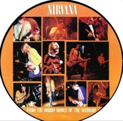 Nirvana / From the Banks of the Muddy Wishkah (1996) / Geffen 072660P (Album, 12 Inch, Picture Disc)