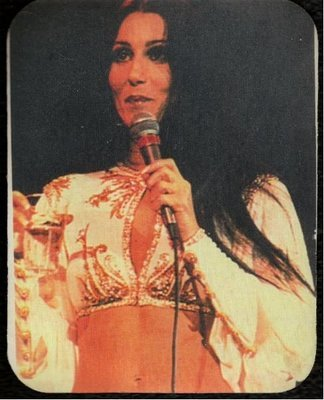 Cher / On Stage 1970's Photo | Mousepad