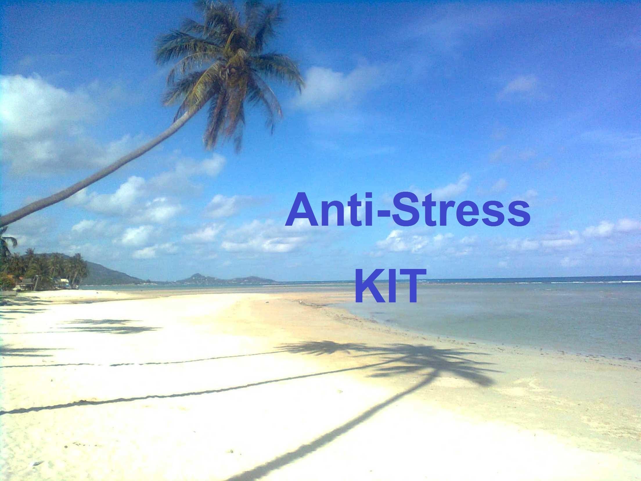 Anti-Stress-Paket (5 Hypnose-mp3 plus Bonusbuch) 00010