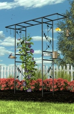 Perching Birds Arch Bird Feeding Station - Black