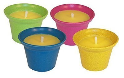 Citronella Scented Candle in Fibre Plant Pot (one supplied)