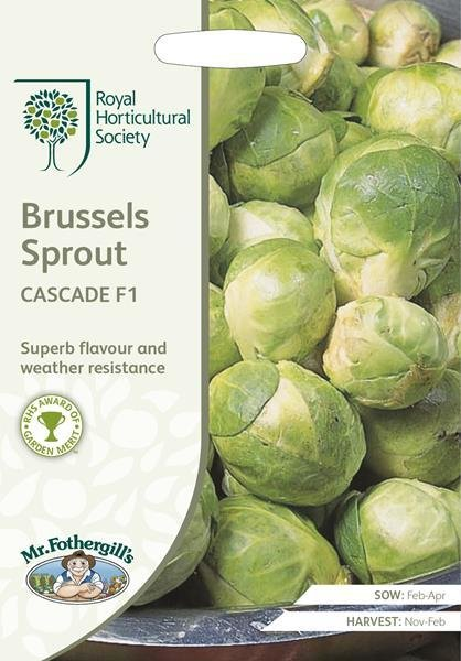 RHS Brussels Sprout Cascade F1