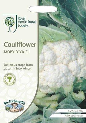 RHS Cauliflower Moby Dick F1