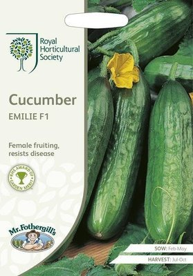 RHS Cucumber Emilie F1