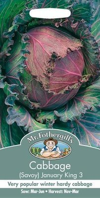 Cabbage January King 3 Seeds