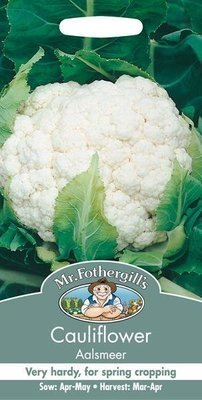 Cauliflower Aalsmeer Seeds