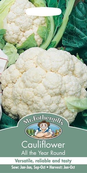 Cauliflower All The Year Round Seeds