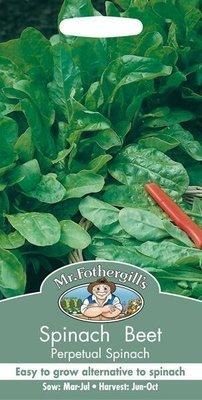 Beet Leaf Perpetual Spinach Seeds
