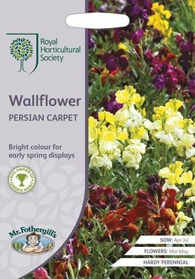 RHS Wallflower Persian Carpet