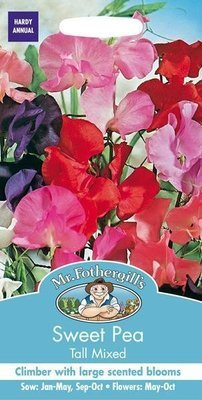 Sweet Pea Tall Mixed Seeds