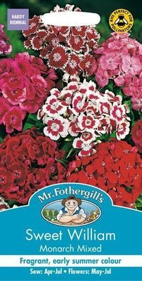 Sweet William Monarch Mixed