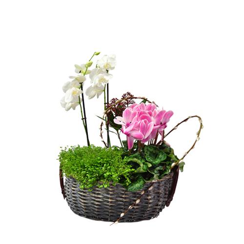 floristas lisboa