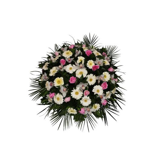 Coroa Mista Pequena 00025