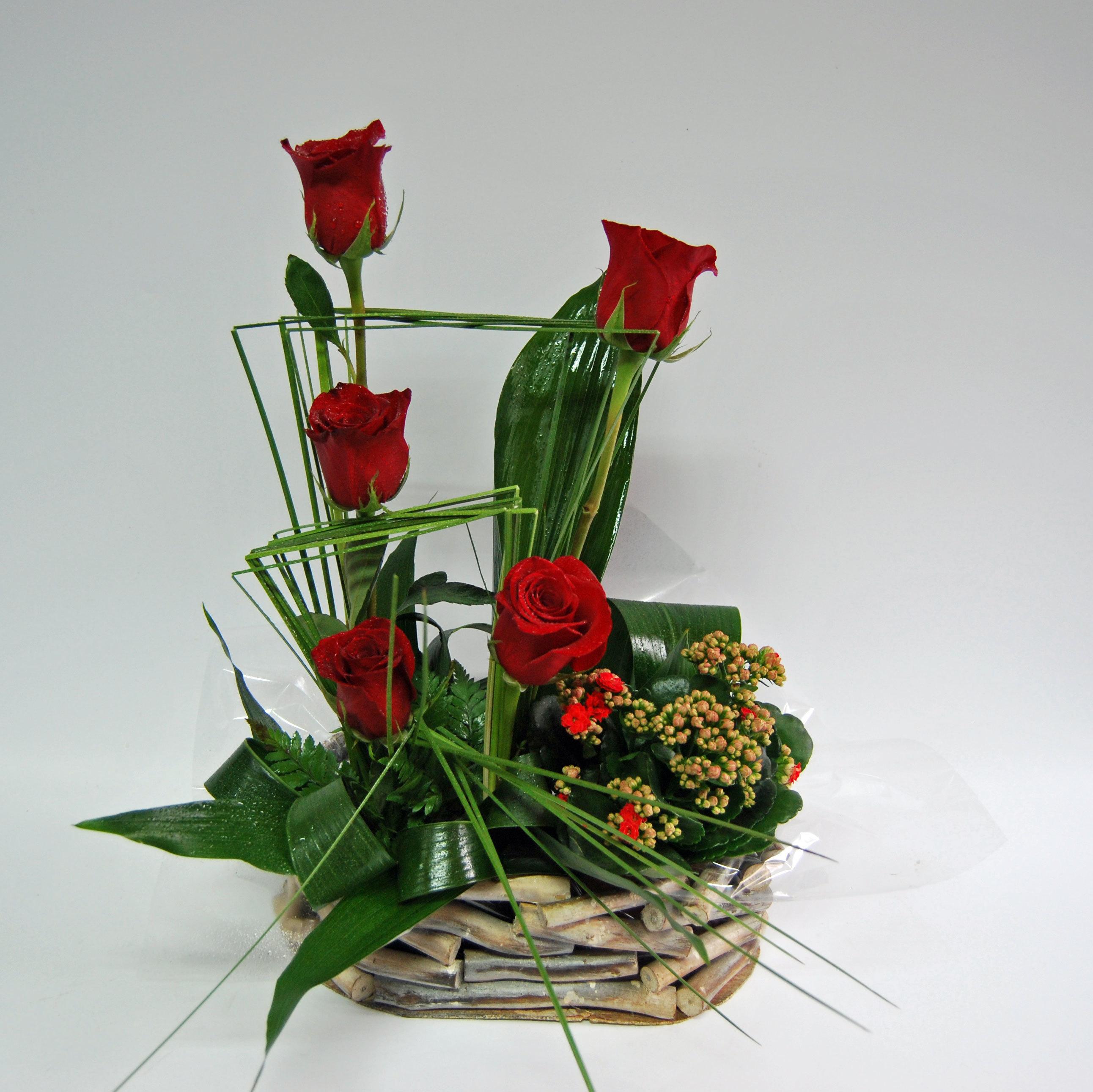 Cesto Rosas com plantas