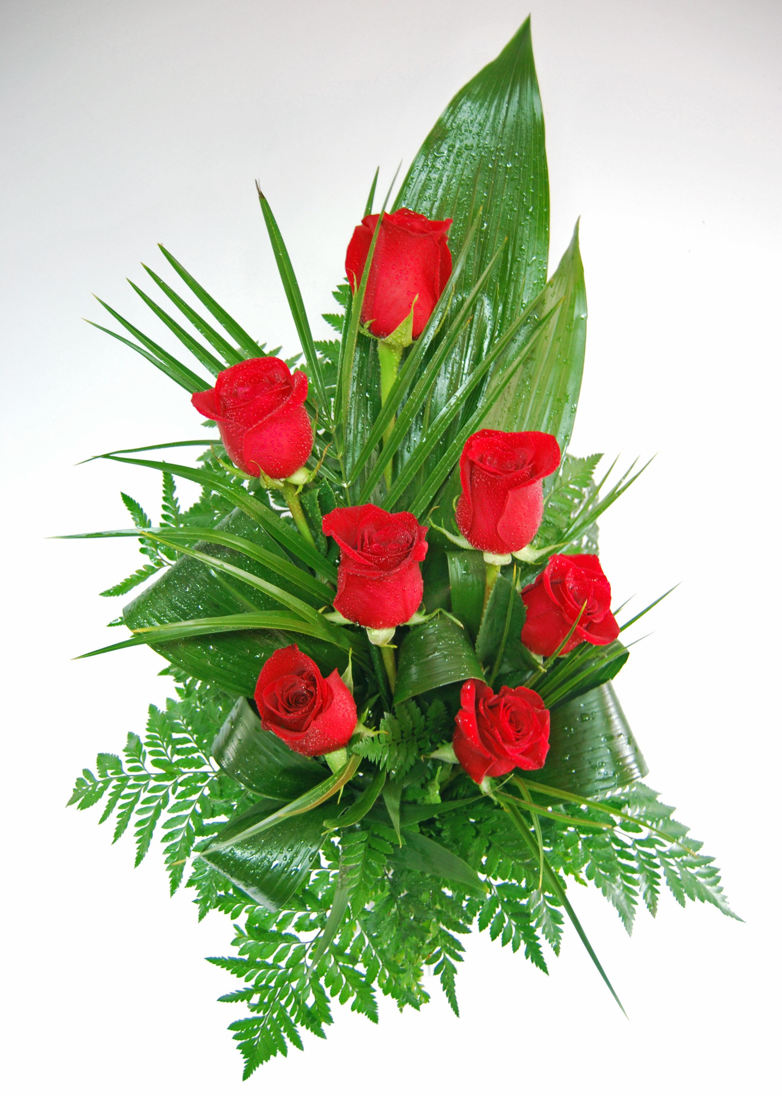 Rosas São Valentim