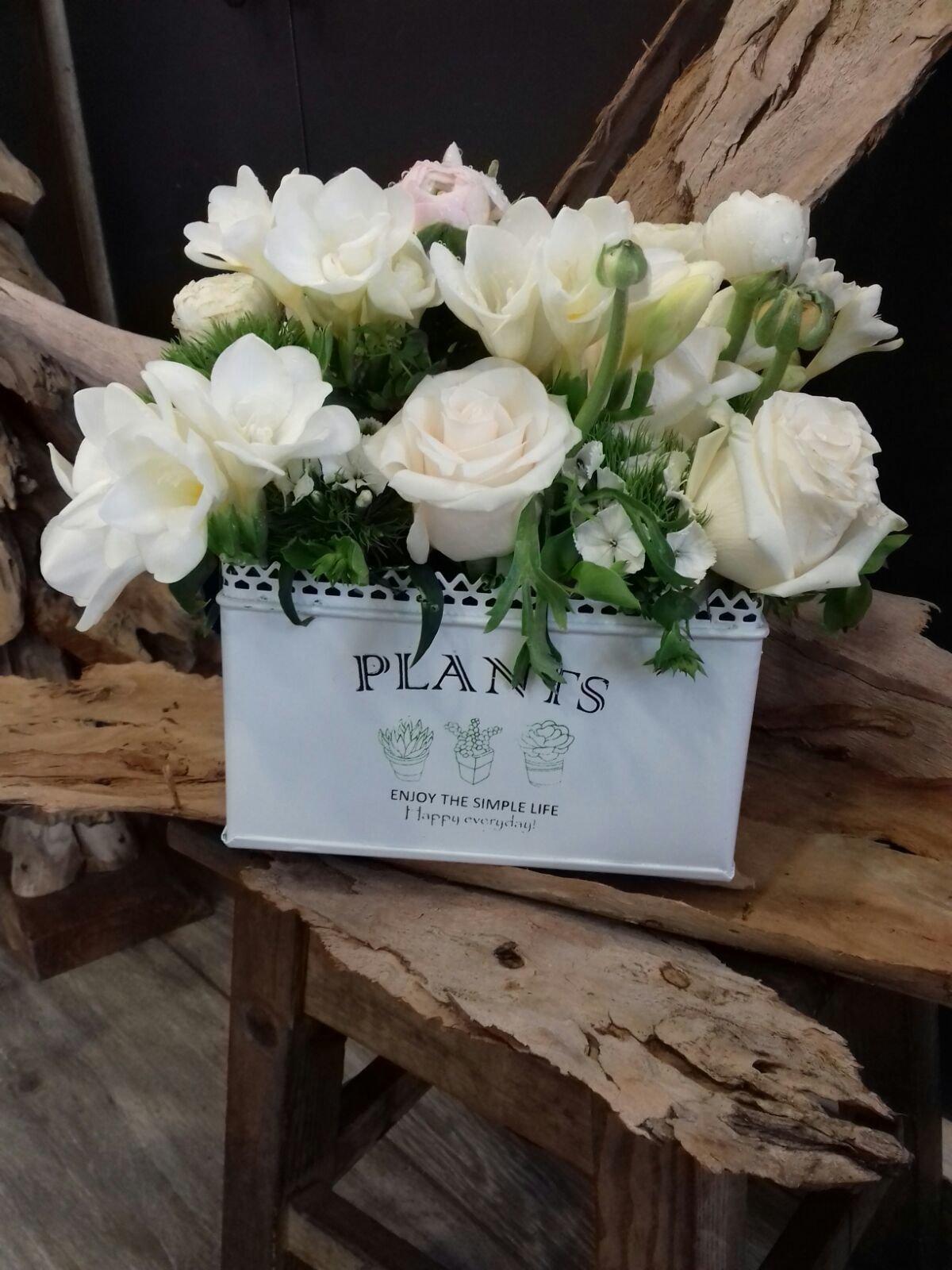 Caixa de Rosas Brancas 00143