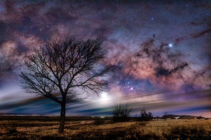 "20"" x 30"" Canvas Wrap of Ramah State Wildlife Area Milky Way, Colorado"