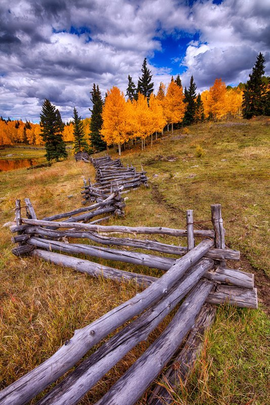 "20"" x 30"" METAL PRINT of Fall Foliage Fence, Colorado"