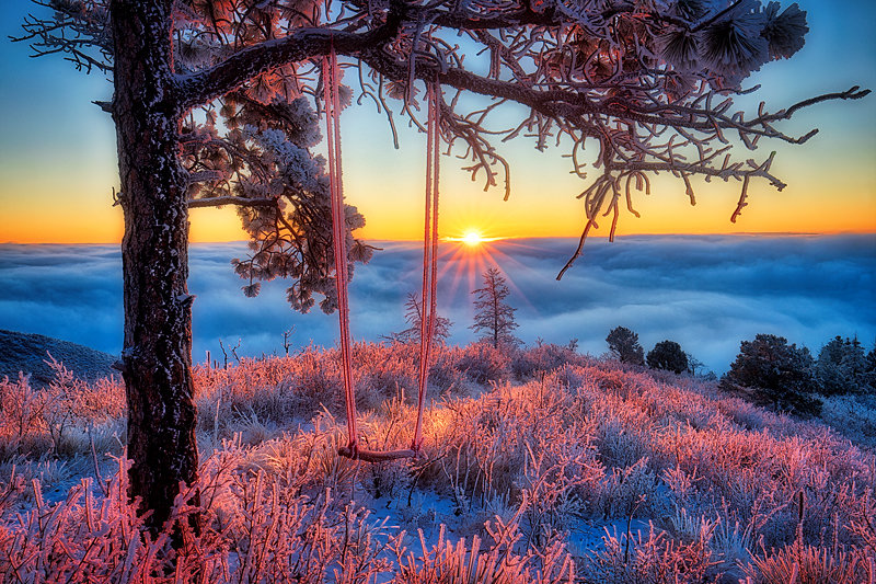 "20"" x 30"" METAL PRINT of Frozen Swing at Sunrise, Colorado"