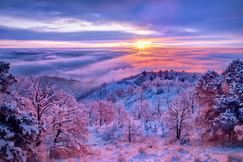 "20"" x 30"" METAL PRINT of Foggy Winter Sunrise, Colorado"