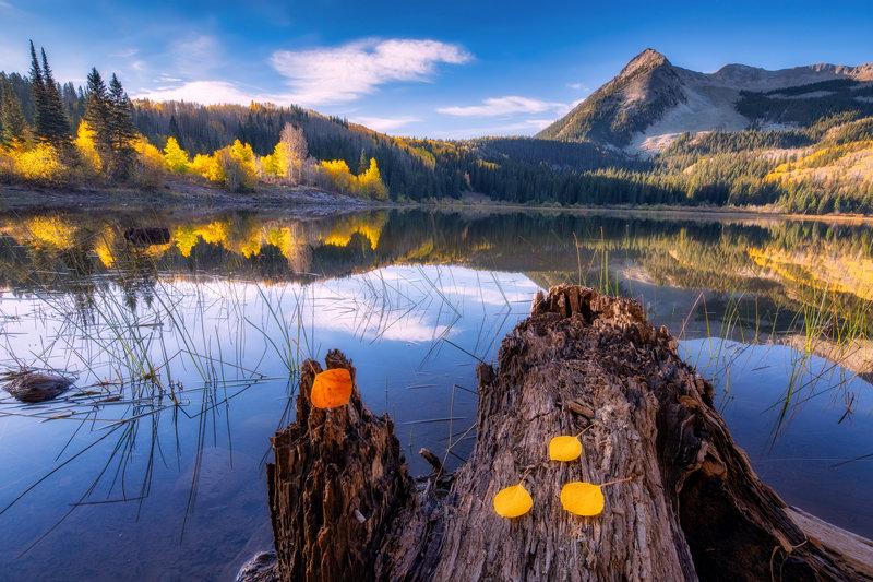 "20"" x 30"" METAL PRINT of Lost Lake Slough Fall Foliage, Colorado"