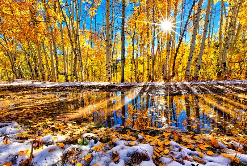 "12"" x 18"" METAL PRINT of Kebler Pass Fall Foliage, Colorado"