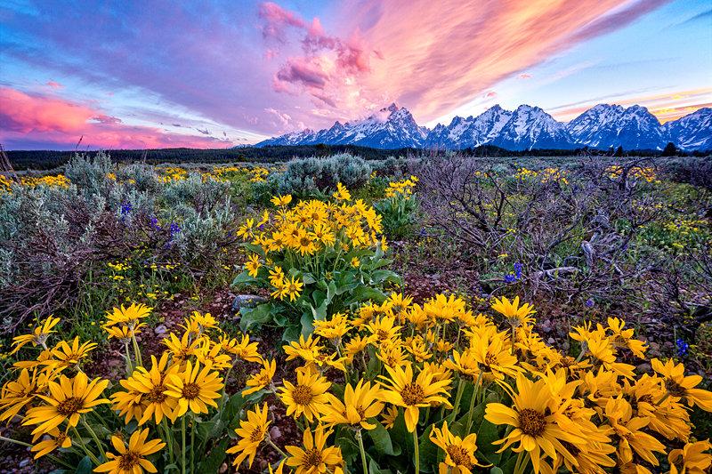 "12"" x 18"" METAL PRINT of Grand Teton National Park, Wyoming"