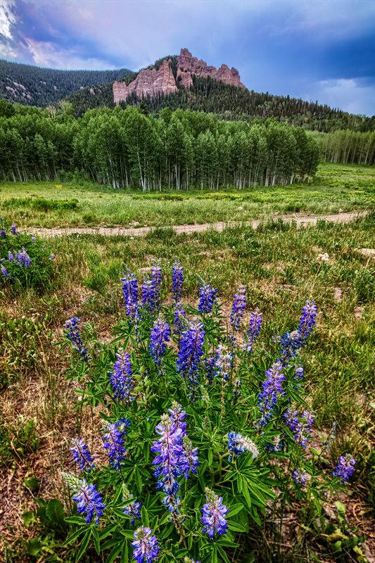 """12"""" x 18"""" METAL PRINT of Cimarron Valley, Colorado"""