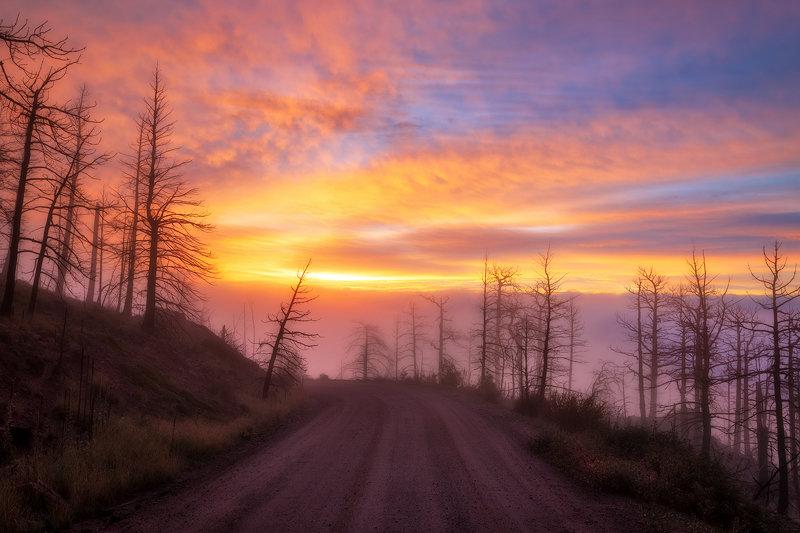 "12"" x 18"" METAL PRINT of Rampart Range Road, Colorado"