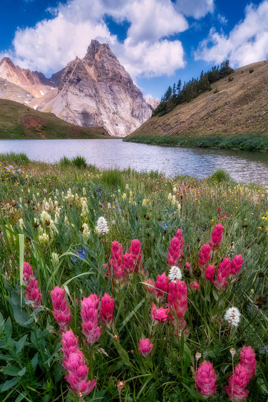 "24"" x 36"" Canvas Wrap of Blue Lakes Wildflowers, Colorado"