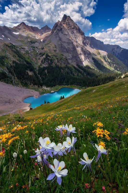 "20"" x 30"" Canvas Wrap of Blue Lakes Wildflowers, Colorado"