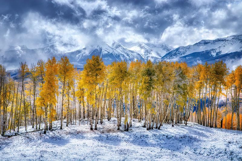 "32"" x 48"" Canvas Wrap of Telluride Fall Foliage, Colorado"