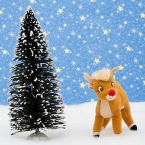 Reindeer Poop CH1003