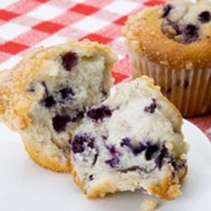 Blueberry Muffin BA1005