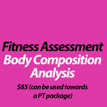 Fitness Assessment & Body Composition Analysis
