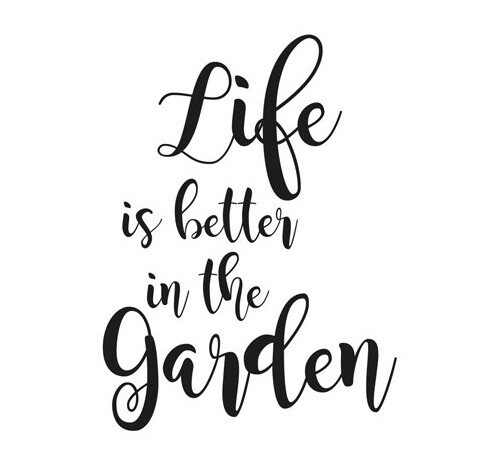 TuinKaars - Garden Pepppermint