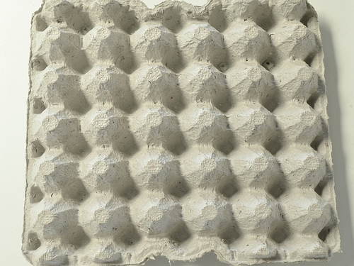 Egg Flats (100 pack) eggflat100