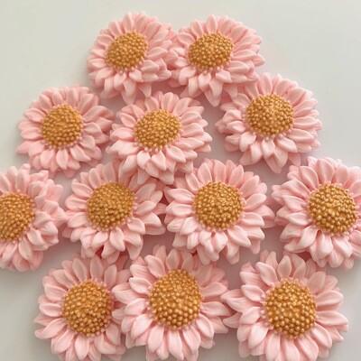 Blush Sunflowers