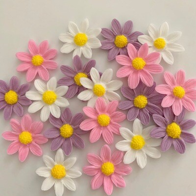 Lilac Pink White Daisies