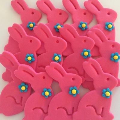 Pink Bunny Rabbits