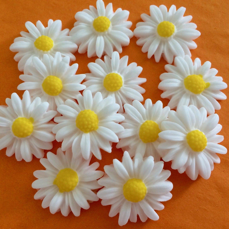 Cupcake Daisies