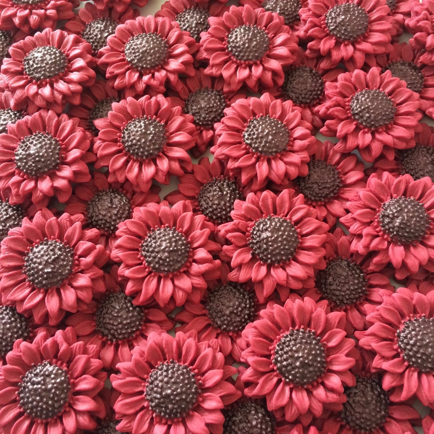 Burgundy Sunflowers