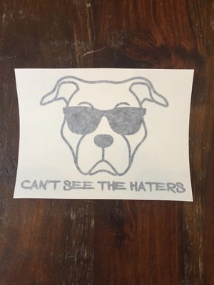 Car Decal - Can't See the Haters - Black