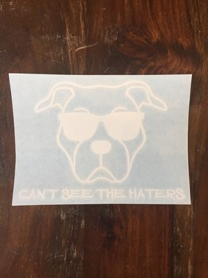 Car Decal - Can't See the Haters - White