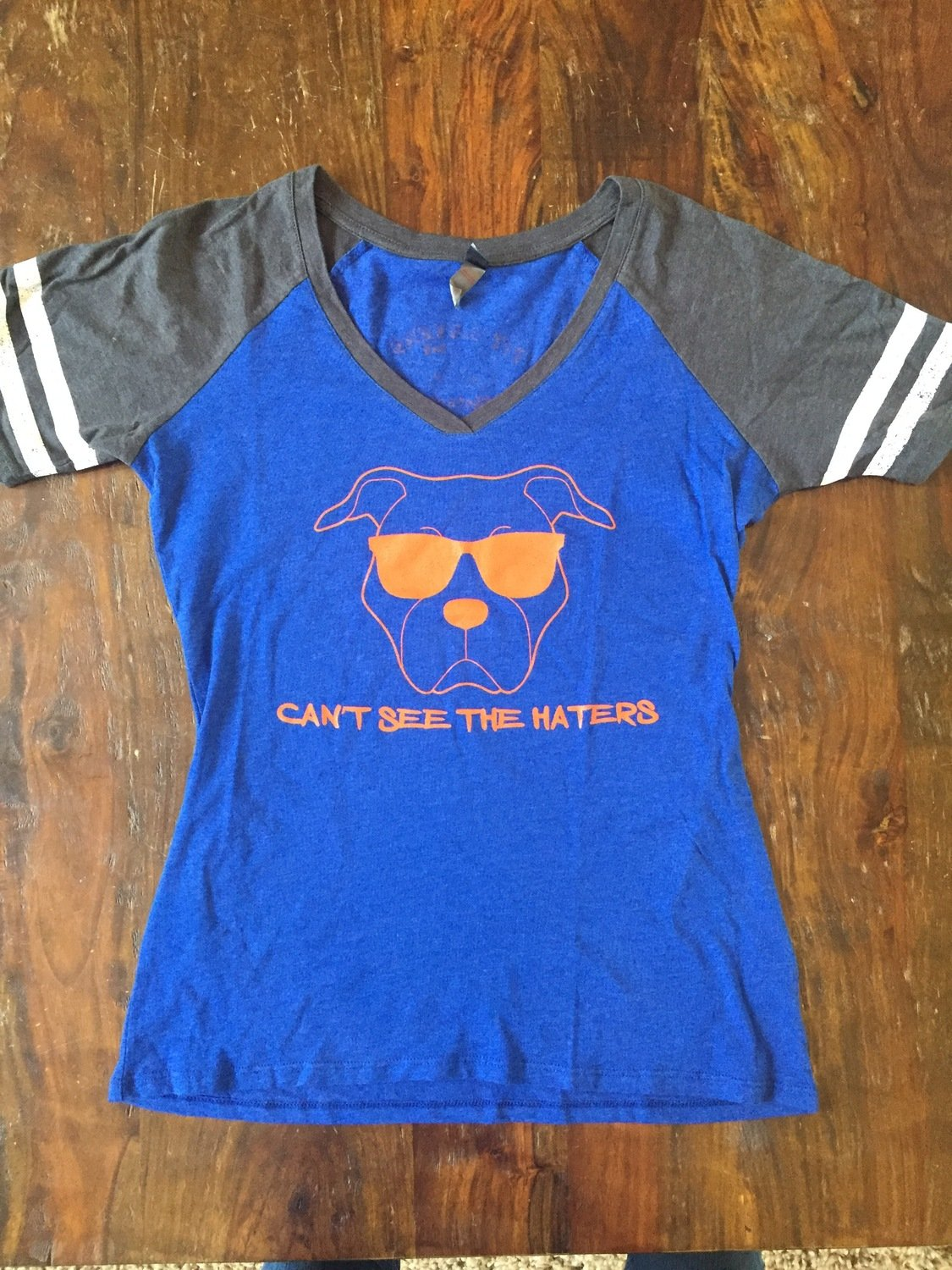 Ladies Vneck- Can't See the Haters- Blue and Gray with Orange writing - Medium