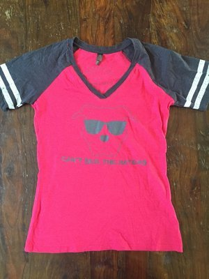 Ladies Vneck- Can't See the Haters- Pink and Gray with Gray writing - XLarge