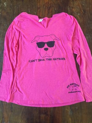 Long Sleeved, V-neck, Hoodie, Pink, Can't See the Haters, Large